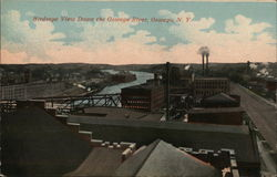 Birdseye View Down the Oswego River Postcard