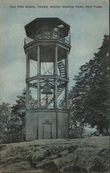 Old Fire Signal Tower, Mount Morris Park