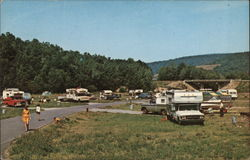 Camping Area at Willow Bay Postcard