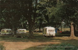 Caravans in the New Forest, Holland's Wood