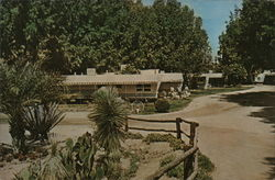 Desert Cypress Trailer Ranch