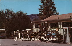 Pinezanita Trailer Ranch & Gift Shop Postcard