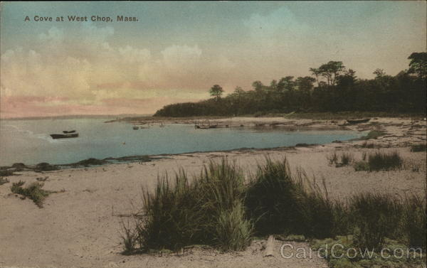 A Cove West Chop Massachusetts