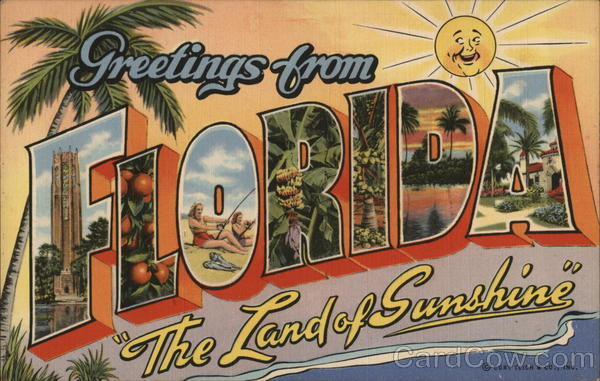 Greetings from The Land of Sunshine Florida Large Letter