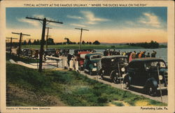 Pymatuning Lake, The Famous Spillway Where the Ducks Walk on the Fish Postcard
