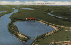 Bird Refuge Showing Canadian Wild Geese Postcard