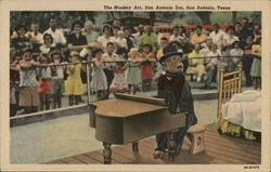 The Monkey Act, San Antonio Zoo