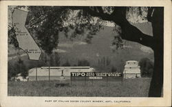 Part of Italian Swiss Colony Winery Postcard
