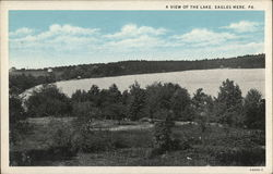 A View of the Lake Postcard