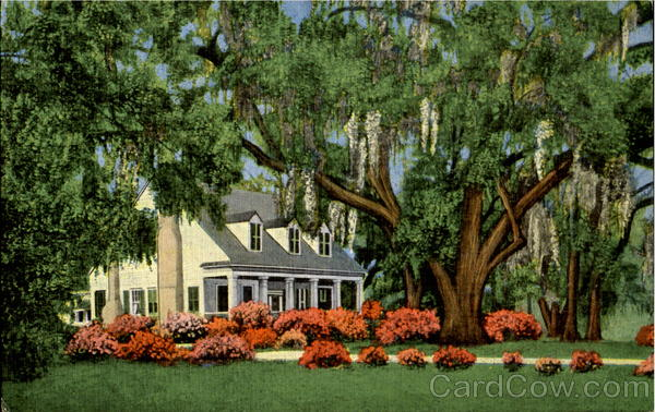 Old Southern Home Amid Mobile Alabama