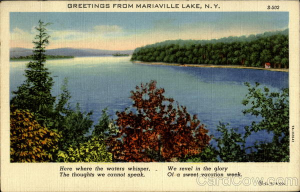 Greetings From Mariaville Lake New York