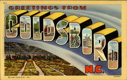 Greetings From Goldsboro Postcard