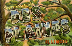 Greetings From Des Plains Postcard