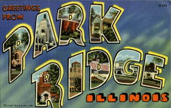 Greetings From Park Ridge Postcard