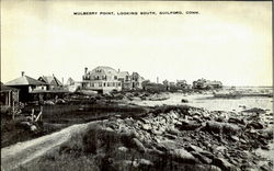 Mulberry Point