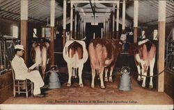 Pneumatic Milking Machine at the Kansas State Agricultural College