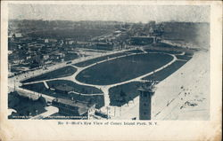 Bird's Eye View of the Coney Island Park