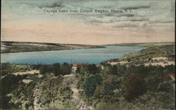 Cayuga Lake from Cornell Heights