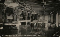 Dining Room, Olympus Lodge