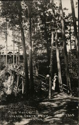 Club House, Itasca State Park Postcard