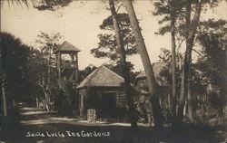 Santa Lucia Tea Gardens