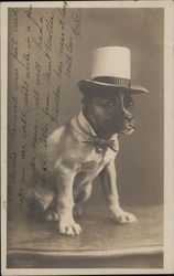 Dog Wearing Top Hat and Bow Tie