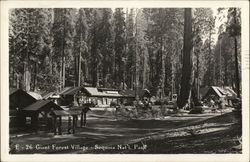 Giant Forest Village - Sequoia Nat'l. Park