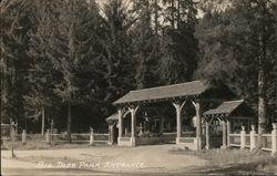 Big Tree Park Entrance
