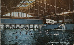 The Plunge, Swimming Pool