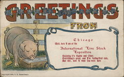 Greetings from Chicago, International Livestock Exposition