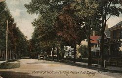 Chestnut Street, from Paulding Avenue