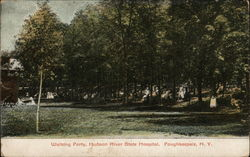 Walking Party, Hudson River State Hospital