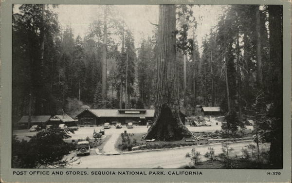 Post Office and Stores, Sequoia National Park California
