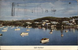 View of Safe Harbour