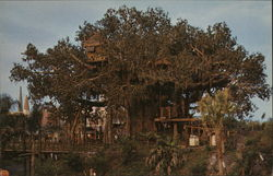 Swiss Family Island Treehouse