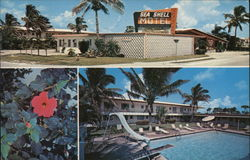 Sea Shell Motel Postcard