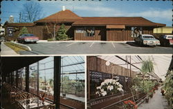 Herb Patullo's Original Greenhouse Restaurant