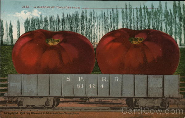 A Carload of Tomatoes Exaggeration