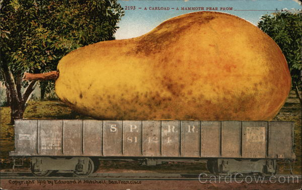 A carload - A Mammoth Pear From ___________ Exaggeration