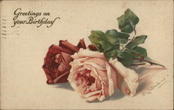 Greetings on Your Birthday - Two Roses Together