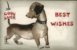 Best Wishes with Good Luck Dog