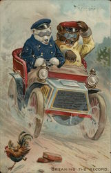 Two Bears Driving Fast Car