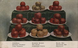 Display of Apples  F. H. LaBaume
