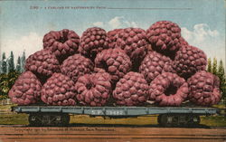 A Carload of Raspberries
