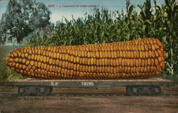 A Cartload of Corn