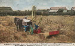 Siberian Farmer