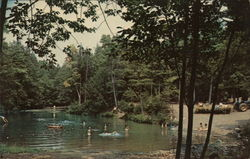 Rip Van Winkle Campground Postcard