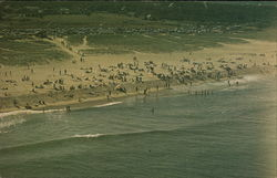 View of Nauset Beach