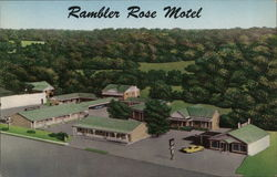 Rambler Rose Motel