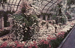 Fall Flower Show, Lavender and White Garden, Phipps Conservatory